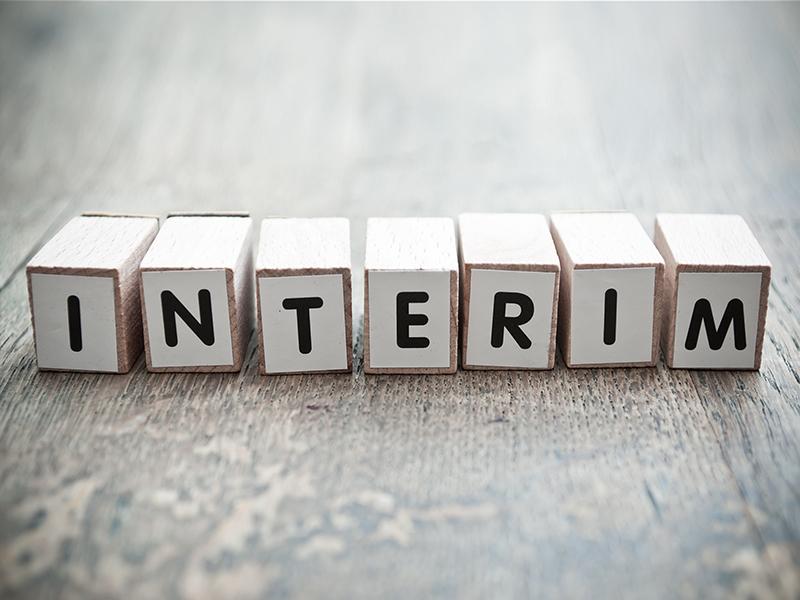 Sales Insight - interim